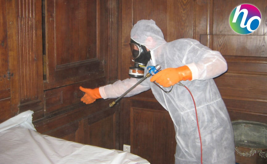 hygiene-office-patrimoine-anoxie-fumigation-014