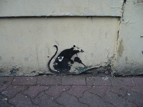 Rat stencil ( http://www.flickr.com/photos/celesteh/3690443640 )