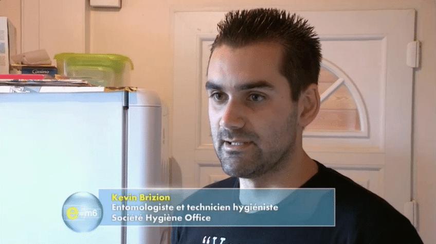 hygiene office éradication des blattes