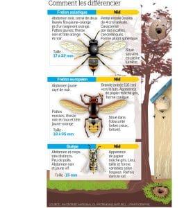 Source inventaire National du Patrimoine Naturel. LP.infographie